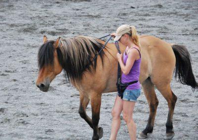 Trening-og-kommunikasjon-med-hest-2