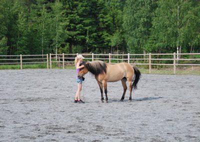 Trening-og-kommunikasjon-med-hest-5