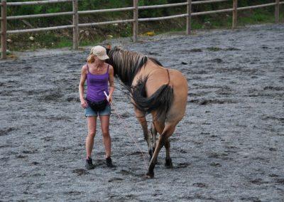 Trening-og-kommunikasjon-med-hest-6